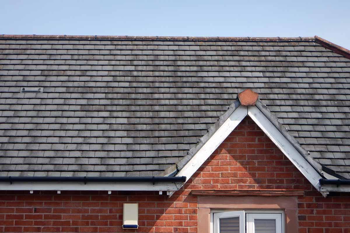 Bat scoping survey of a house in West Timperley, Trafford